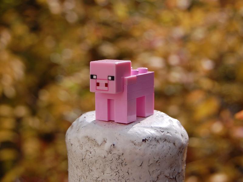 Elegir el mejor Hostings para Minecraft