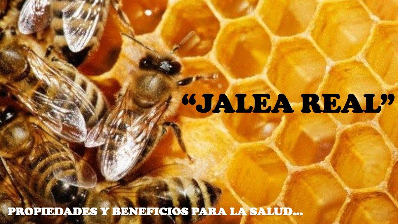 jalea real